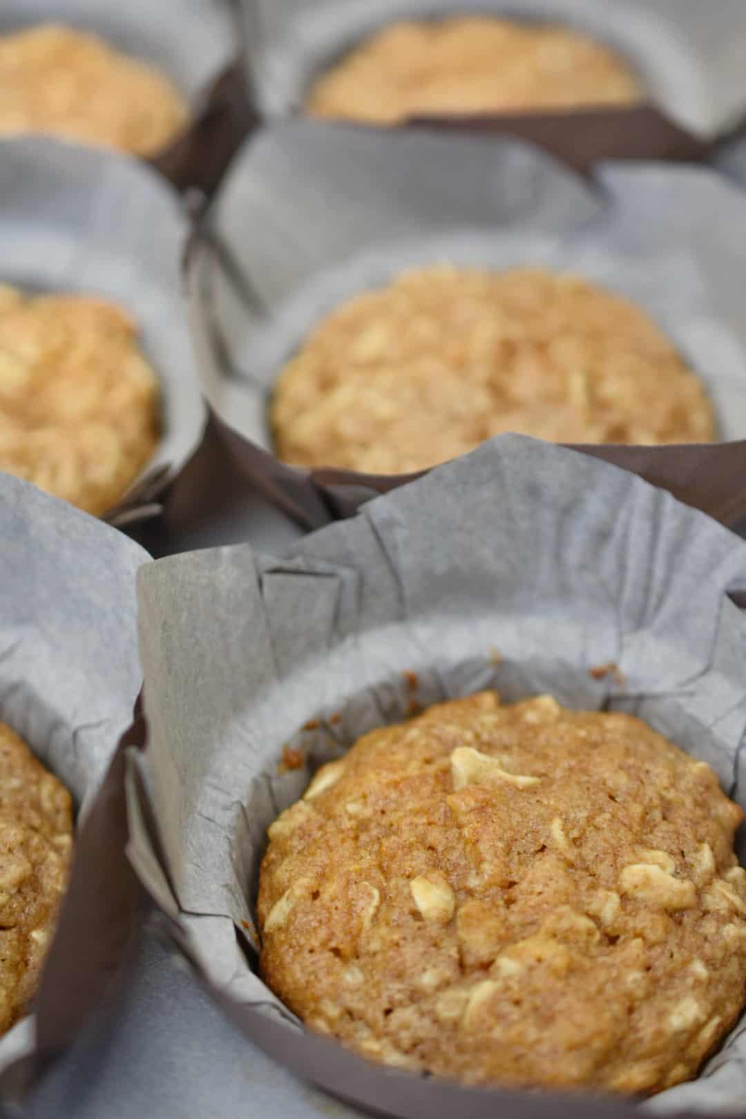 closeup of oatmeal applesauce muffins in a muffin pan