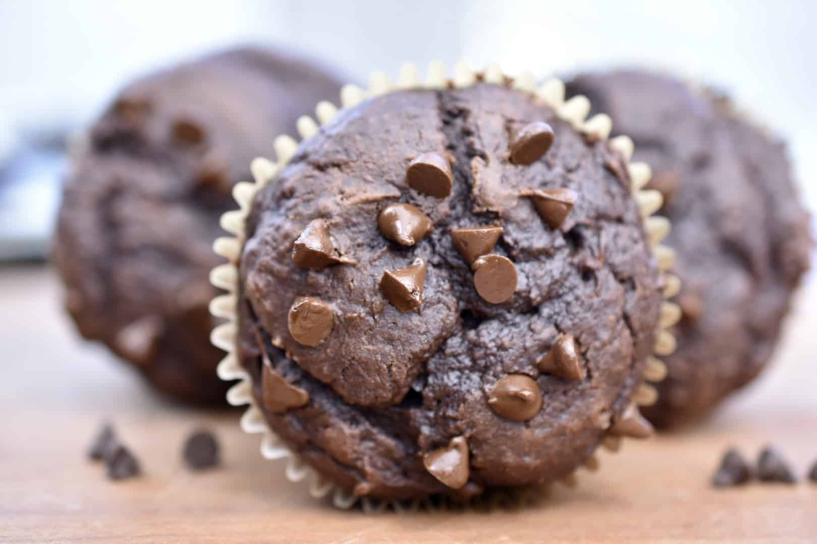 closeup of 100 calorie chocolate muffin with chocolate chips on top