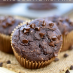 closeup of 100 calorie chocolate muffins on a plate